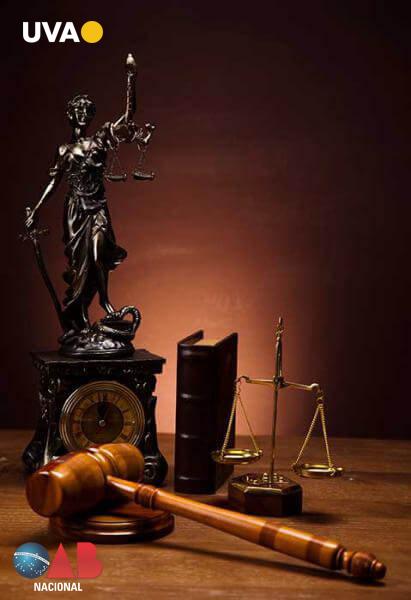 Miniatura da publicação de direito